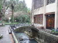 отель амра гагра абхазия