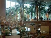 Sheraton Jumeira Beach Resort & Towers ����