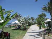Athena Beach ����