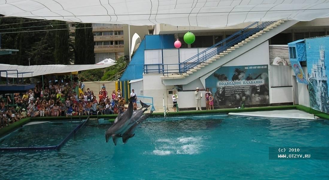 дельфинарий ялта фото вентиляция